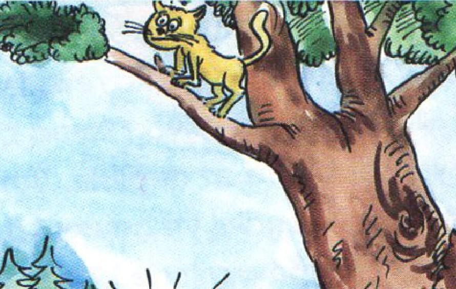 Tilki ile Kedi Masalı - Kısa Masallar Oku ve Dinle