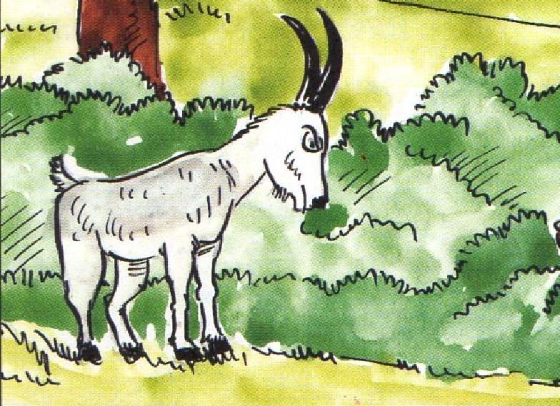 Özgürlüğünü Seven Keçi | Uzun Masallar Dinle