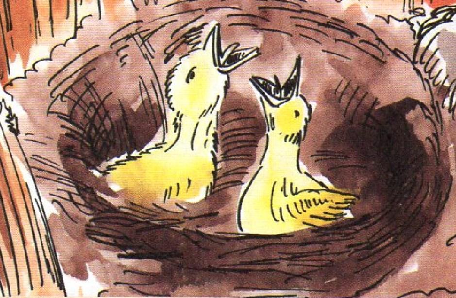 Çocuk ve bebek masalları - Uzun ve kısa masallar www.cocukgezegeni.com