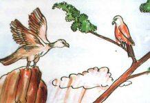Görme Yarışı Masalı | Masal Oku