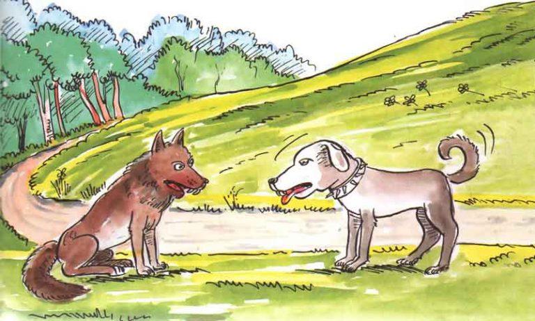 Kurt ve Çoban Köpeği Masalı Oku | Çocuklar için Masal Dinle